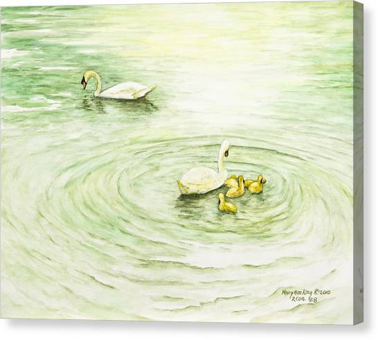 Swans In St. Pierre Canvas Print