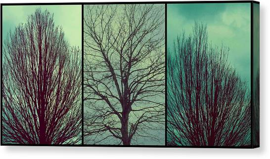 Sweep The Sky Canvas Print