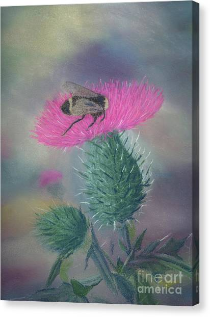 Sweet And Prickly Canvas Print