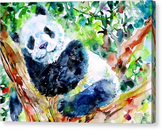 Sleeping Giant Canvas Print - Sweet Dreams Panda by Fabrizio Cassetta