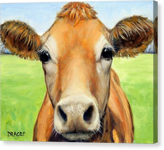 Cow Canvas Print - Sweet Jersey Cow In Green Grass by Dottie Dracos