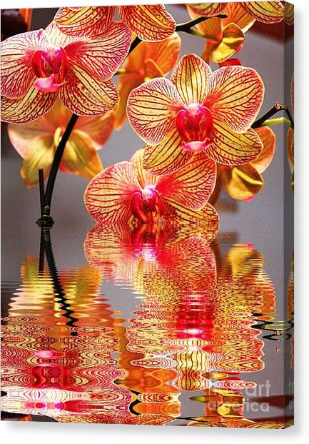 Sweet Orchid Reflection Canvas Print