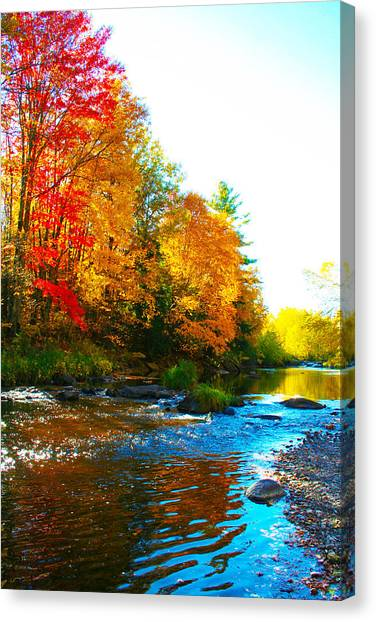Sweet Serenity Canvas Print