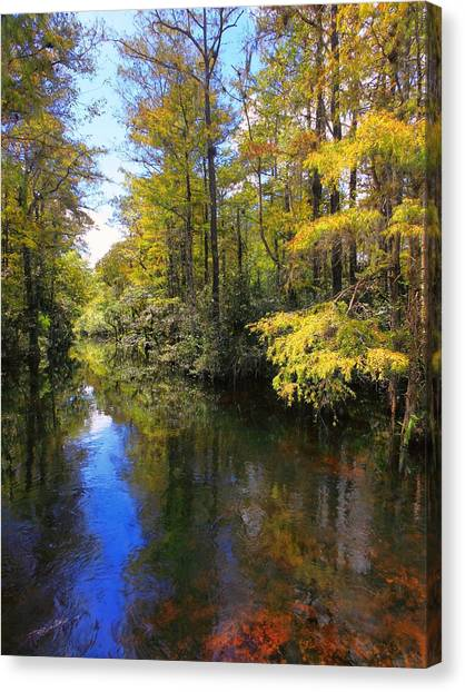 Sweetwater Strand - 3 Canvas Print