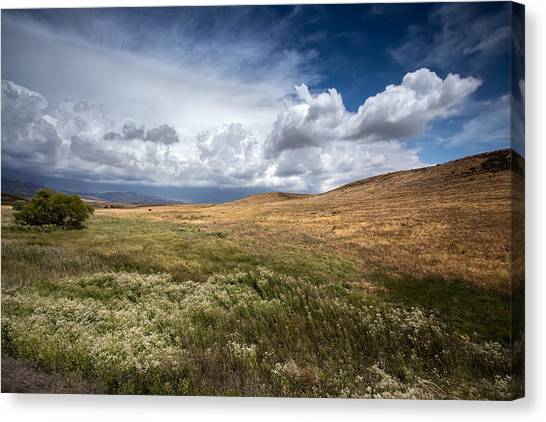 Big Sky Canvas Print - Swept Away by Peter Tellone