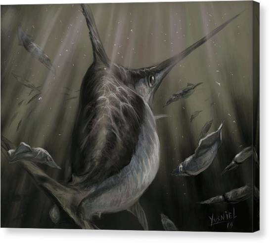 Fish Tanks Canvas Print - Sword Fish  by Yusniel Santos
