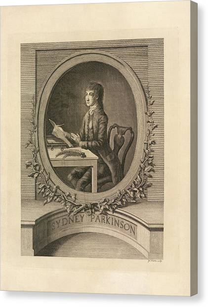 English And Literature Canvas Print - Sydney Parkinson by British Library