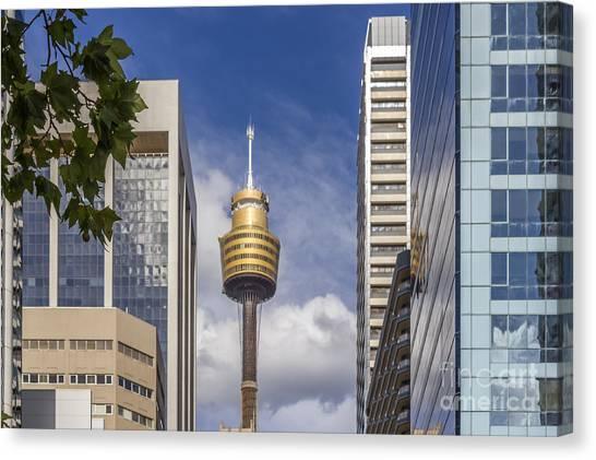 Sydney Tower Canvas Print