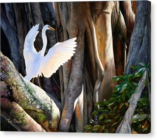 Egrets Canvas Print - Symphony At Sunrise by Tim Davis