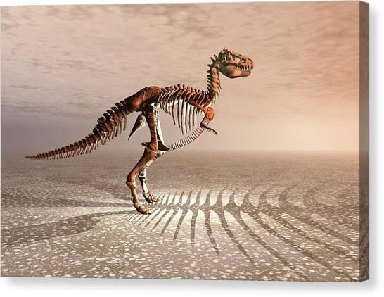 T-bone Canvas Print - T. Rex Dinosaur Skeleton by Carol & Mike Werner