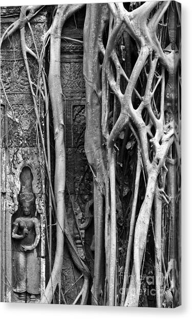 Ta Prohm Roots And Stone 09 Canvas Print