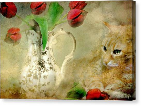 Tabby And Tulips Canvas Print