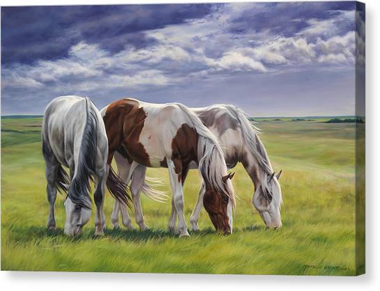 Horse Farms Canvas Print - Tail Wind by JQ Licensing