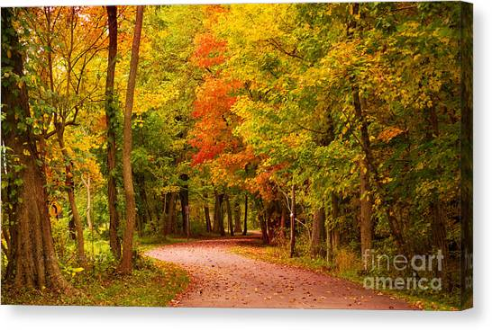Take Me To The Forest Canvas Print