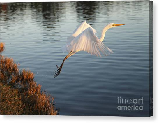 Take Off Canvas Print