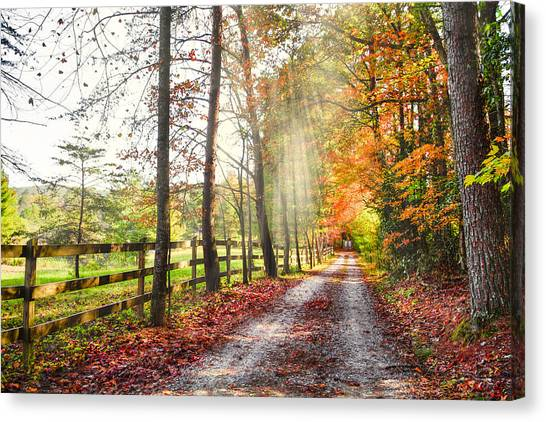 Take The Back Roads Canvas Print