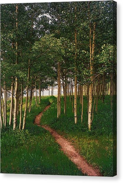Taking Tthe Path Less Traveled Canvas Print by Carl Bandy
