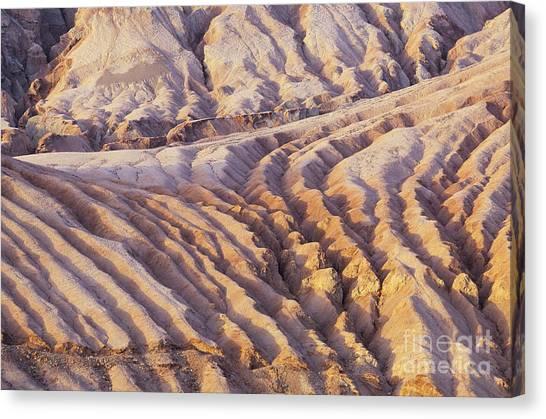 Sandy Desert Canvas Print - Taklimakan Desert by Art Wolfe