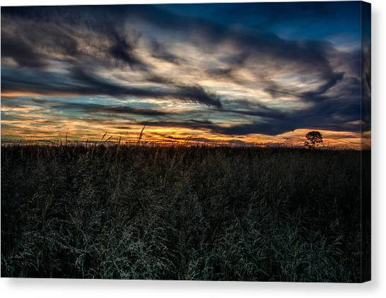 Prairie Sunsets Canvas Print - Tallgrass Sunset by Larry Pacey