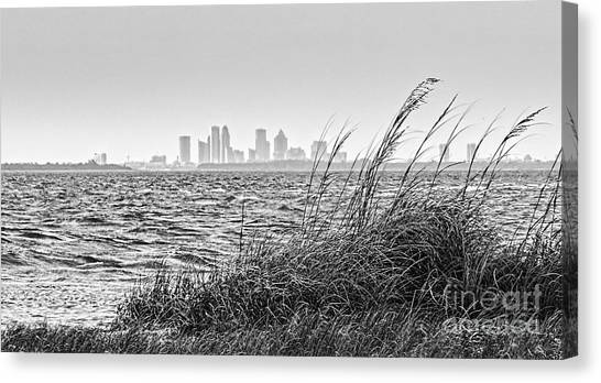 Tampa Across The Bay Canvas Print
