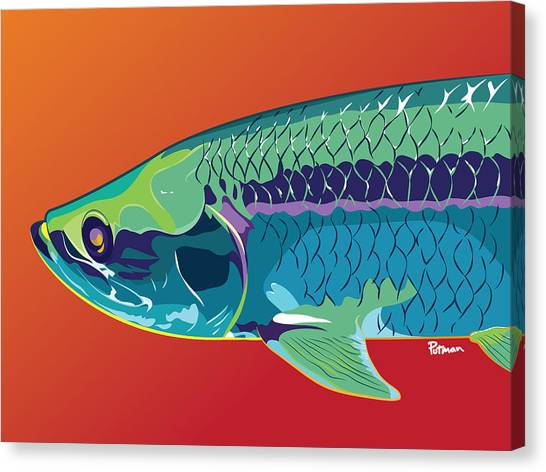 Fish Canvas Print - Tarpon Colors by Kevin Putman