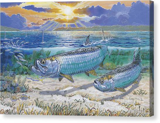 Atlantis Canvas Print - Tarpon Cut In0011 by Carey Chen