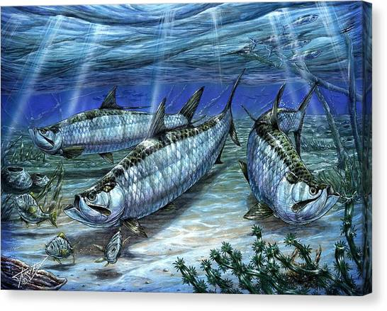 Tarpon In Paradise - Sabalo Canvas Print