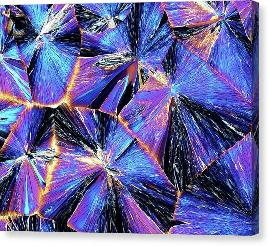 Chemicals Canvas Print - Tartaric Acid Crystals by Pasieka