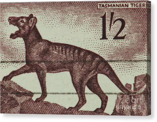 Tasmanian Tiger Vintage Postage Stamp Canvas Print