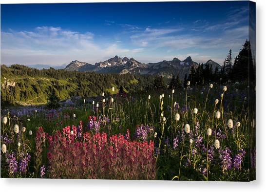 Mountain Ranges Canvas Print - Tatoosh Mountain Range by Larry Marshall