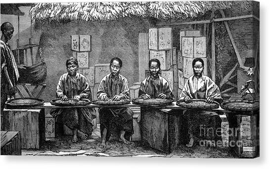 Tea Leaves Canvas Print - Tea Sorters In China, 1880s by Bildagentur-online