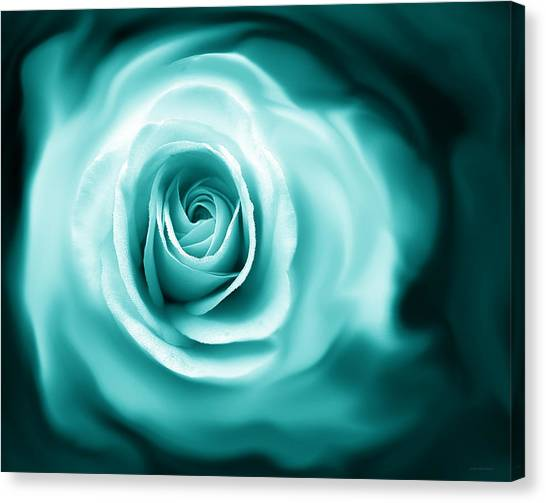 Teal Rose Flower Abstract Canvas Print