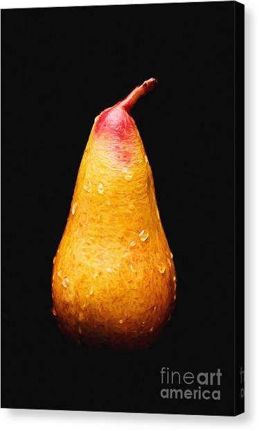 Tears Of A Sad Pear Canvas Print