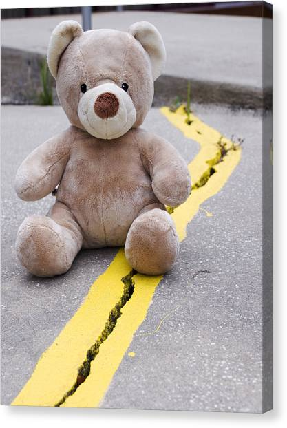 Care Bears Canvas Print - Teddy Bear 3 by William Patrick
