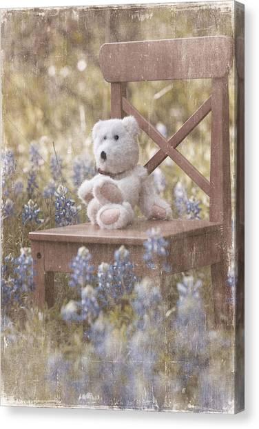Teddy Bear And Texas Bluebonnets Canvas Print