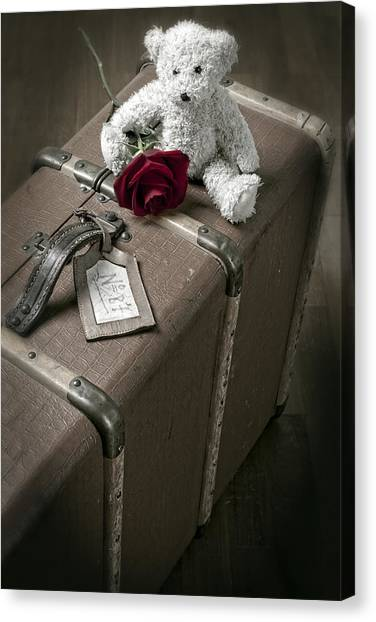 Red Roses Canvas Print - Teddy Wants To Travel by Joana Kruse