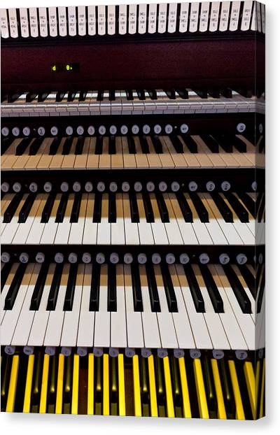 Teeth Of An Instrument Canvas Print
