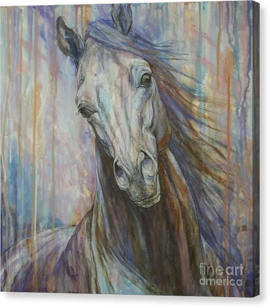 Horse Canvas Print - Tempest by Silvana Gabudean Dobre