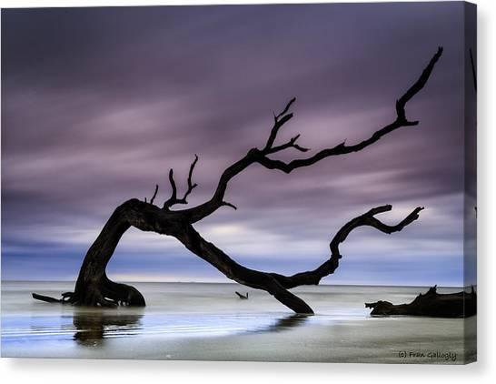 Tempest Tossed Canvas Print
