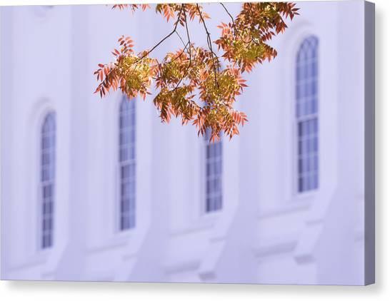 Autumn Leaves Canvas Print - Temple Accent by Chad Dutson