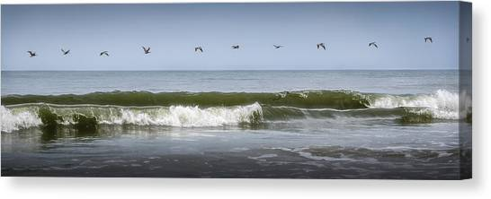 Canvas Print featuring the photograph Ten Pelicans by Steven Sparks