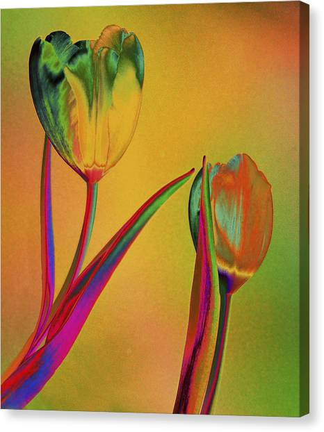 Tender Touch Canvas Print