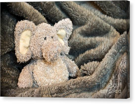 Teddy Bears Canvas Print - Tenderness by Delphimages Photo Creations