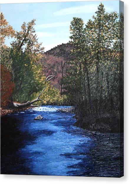 Tennessee A River Through The Woods Canvas Print by Beth Parrish