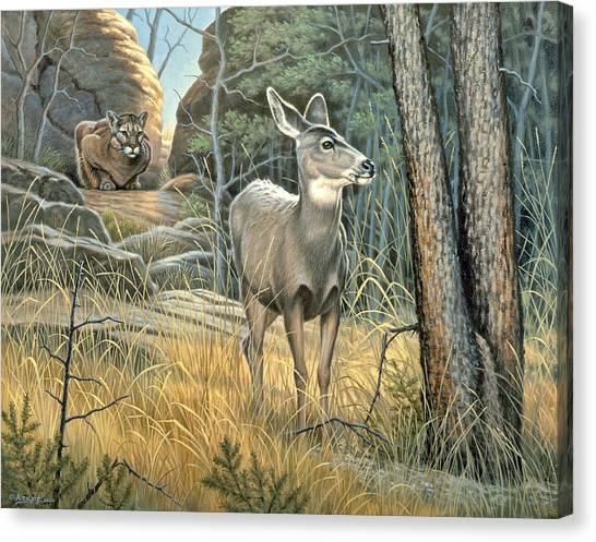 Mule Deer Canvas Print - Tension by Paul Krapf