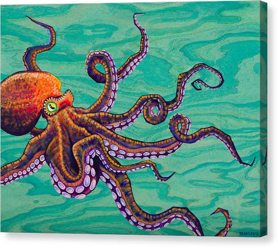 Squids Canvas Print - Tentacles by Emily Brantley