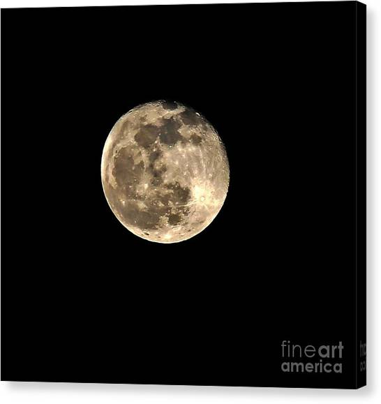 Teresa The Moon Canvas Print by Kip Krause
