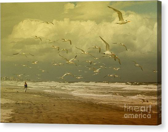 Terns In The Clouds Canvas Print