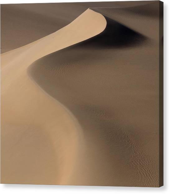 Gobi Canvas Print - Terra Incognita Xxxiii by Will Nourse
