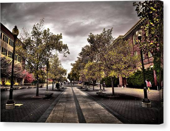 Washington State University Canvas Print - Terrell Mall On The Wsu Campus by David Patterson